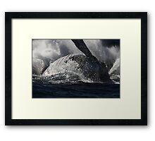 Whale Splash Framed Print
