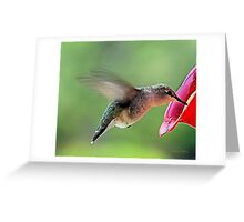 The Beauty of Nature Greeting Card