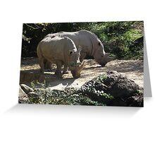 Rhinos Greeting Card