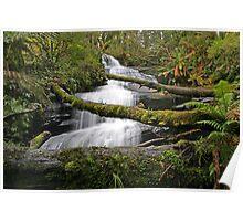 Triplet Falls, Otways, Australia Poster
