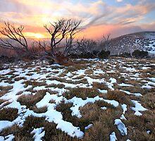 Mt Hotham Early Winter Sunset, Australia by Michael Boniwell
