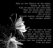 As pale as the flowers of the night by Damian