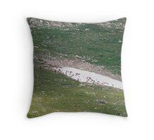 Elk Herd Throw Pillow