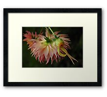 I Am Not the Only One Who Cries For Us Framed Print