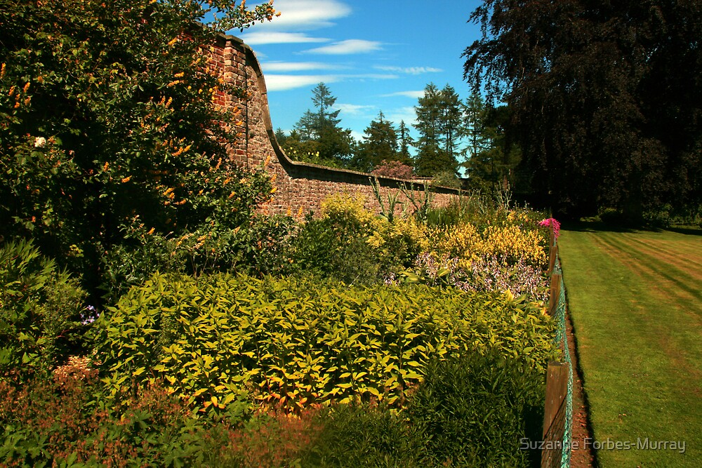 outside the walled garden by Suzanne Forbes-Murray