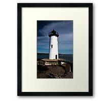 Silent Summer Sentry Framed Print