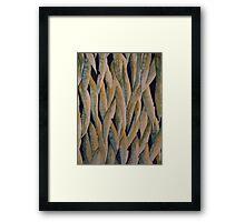Beneath Blue Mountain Gums  © Patricia Vannucci 2008 Framed Print