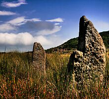 Craigmaddie Standing Stones by Paul Cook