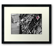 Love Locks in Paris Framed Print