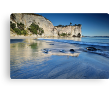 Stingray Bay Blues Canvas Print