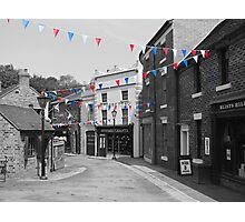 Bunting Photographic Print