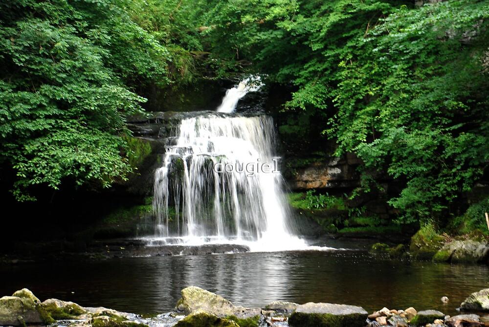 West Burton Falls by dougie1