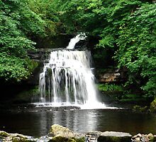 West Burton Falls by dougie1