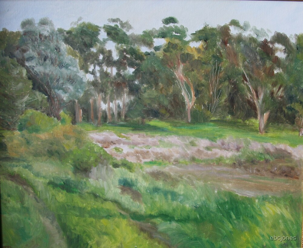 Moraga Field, Hwy 1, California by ebcjones