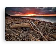 Amodeo Bay Blaze Canvas Print
