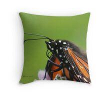 Monarch* @ Throw Pillow