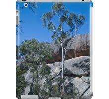 Evans Crown iPad Case/Skin