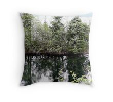 Reflections off the Dalton Highway Throw Pillow