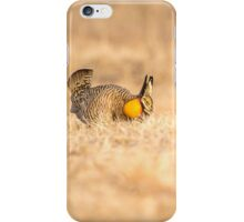 Prairie Chicken 2013-13 iPhone Case/Skin