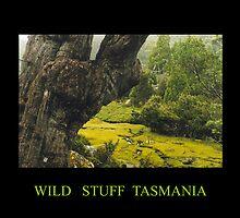 Wild stuff Tasmania by Margestuff