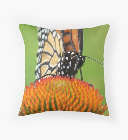 I See You, Looking at Me Throw Pillow