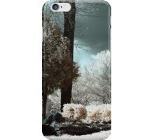 The Pavilion iPhone Case/Skin