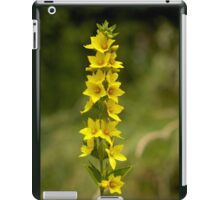 Dotted Yellow Loostrife, Muckross Head, Donegal iPad Case/Skin