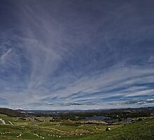 Panorama View from Dairy Farmers Hill at the National Arboretum in Canberra/ACT/Australia by Wolf Sverak