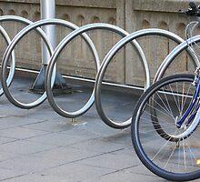 Silver Bike Loop! by Lesley  Hill