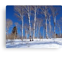 REXSBURG'S BEAUTIES Canvas Print