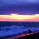 Sunset Skimboarder by Barbara Gordon