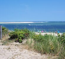Summer on Cape Cod by Marcia Plante