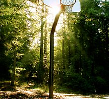 Color Basketball Hoop by Robbs