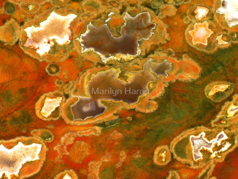Australian Rainforest Jasper by Marilyn Harris