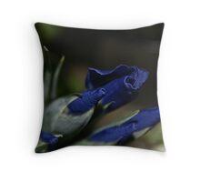 Elegant 1; Whittier, CA USA Throw Pillow