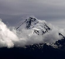 Mt. Hood by gail anderson