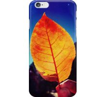 Summer Leaf iPhone Case/Skin