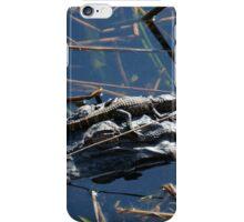 Baby Gator & Mother iPhone Case/Skin