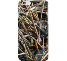 Baby Gators iPhone Case/Skin
