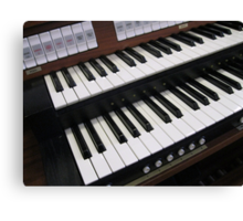 Rows of Keys - Section of Organ Keyboard Canvas Print