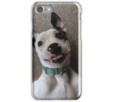Silly Pitbull iPhone Case/Skin