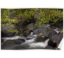 Mungalli Rapids Poster