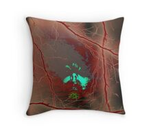 Coming out of Chaos Throw Pillow