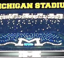 Michigan Stadium by cgraham13