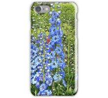 The Promise Of Summer iPhone Case/Skin
