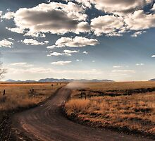 Dust in the Wind by Barbara Manis