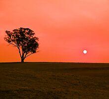 Drought sunset by Bernadette Maurer