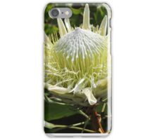 White Protea iPhone Case/Skin