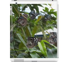 Blue Tiger Butterflies iPad Case/Skin
