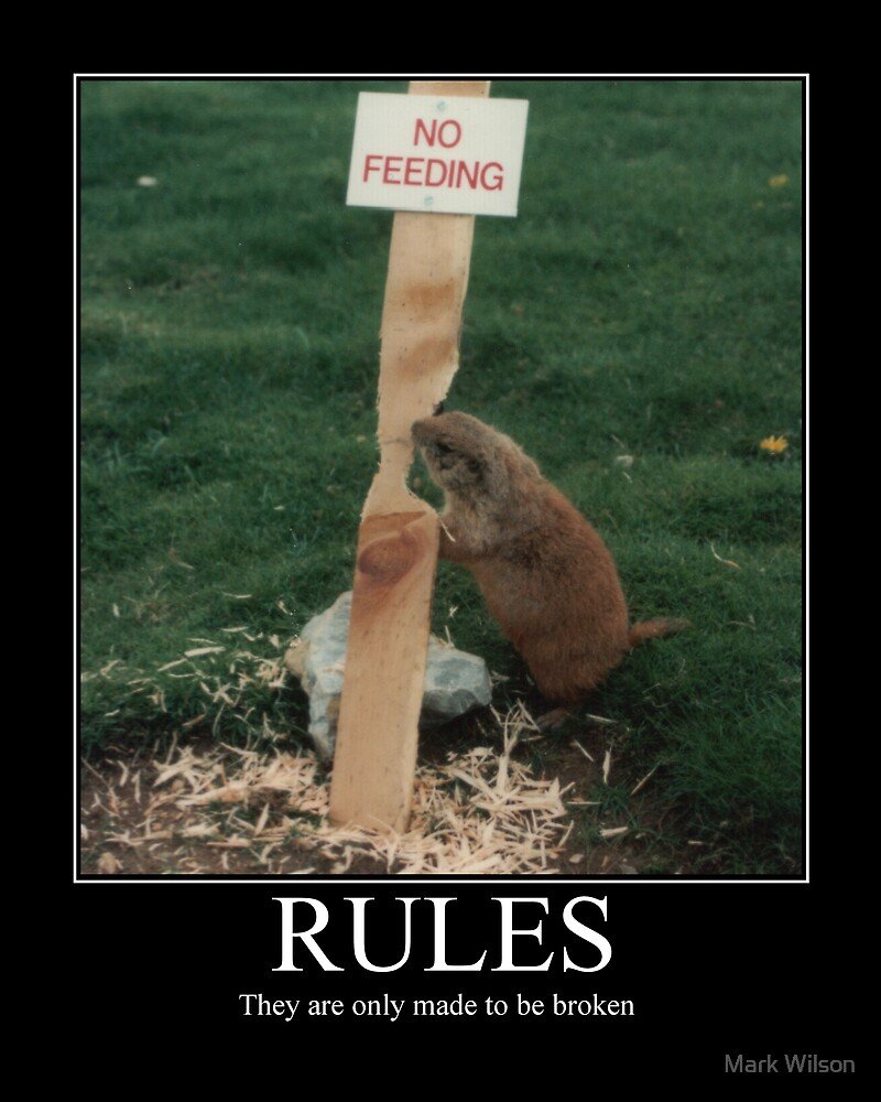RULES by Mark Wilson